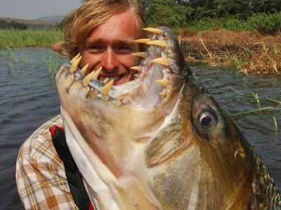 Trophy Tiger Fish